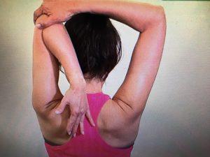 サタデープラス 二の腕ほっそり体操